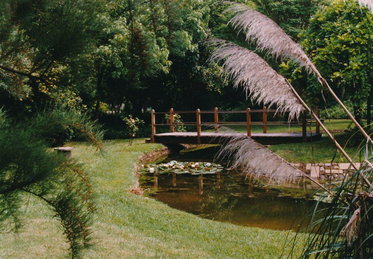 5 - Vedanta Society of Sacramento - Garden of Saints - Lotus Pond - Image 1