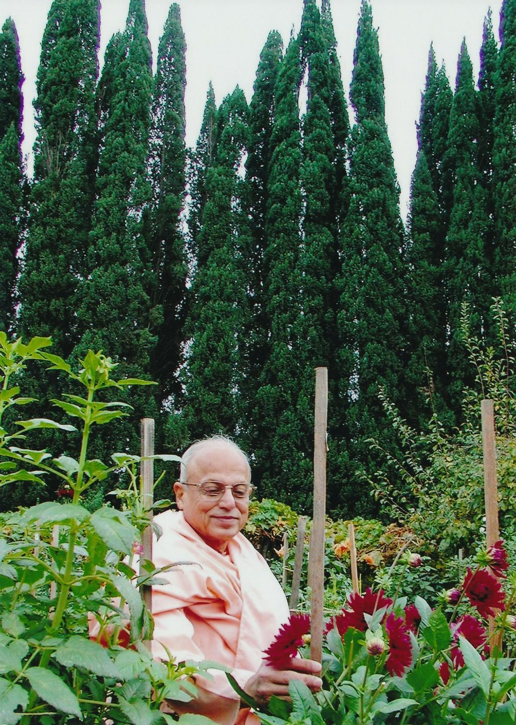 Swami Prapannananda in the Daliah garden